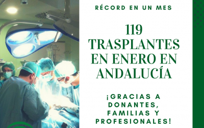EN ANDALUCÍA SE REALIZARON 119 TRASPLANTES EN ENERO