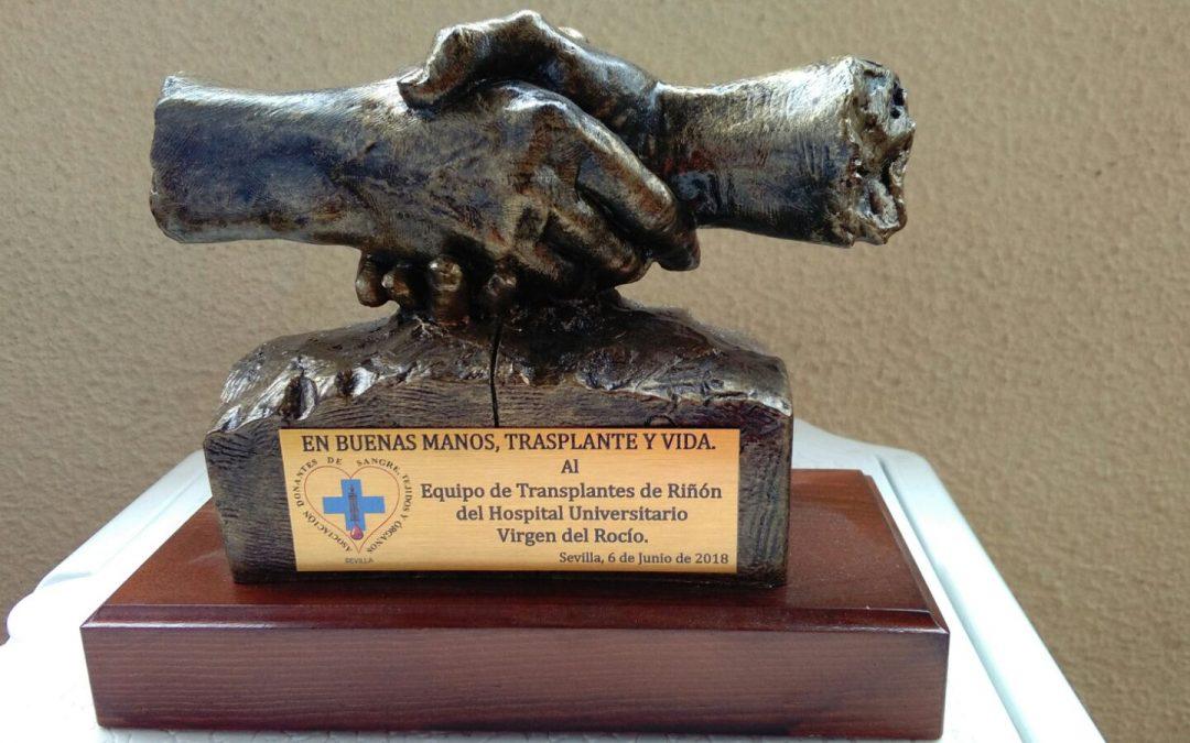 Día Nacional del Donante de Órganos